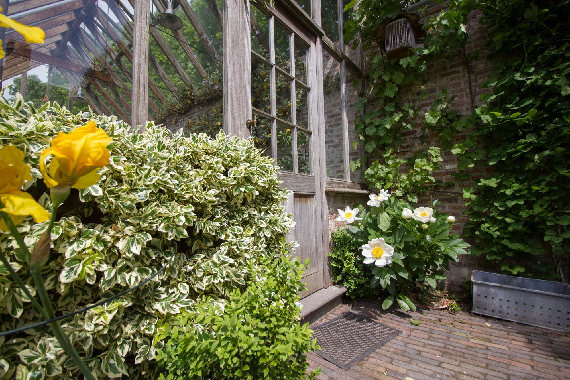 bloemen bij deur
